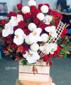 Hoa Chúc Mừng Rực Rỡ