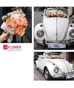 xe hoa cô dâu chú rể